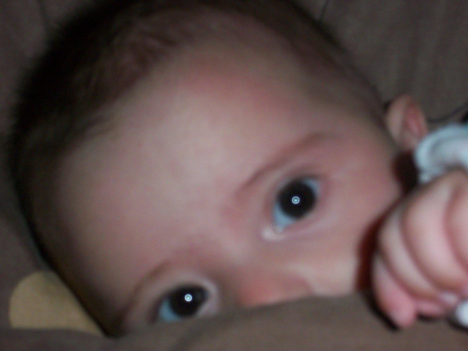 http://1.bp.blogspot.com/-dRIZEFpG-oY/Tm-v85vquXI/AAAAAAAAAAY/lDyJdpsCPMA/s1600/100_1854.JPG