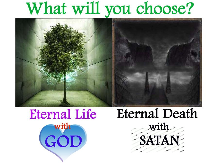 essay on life vs death