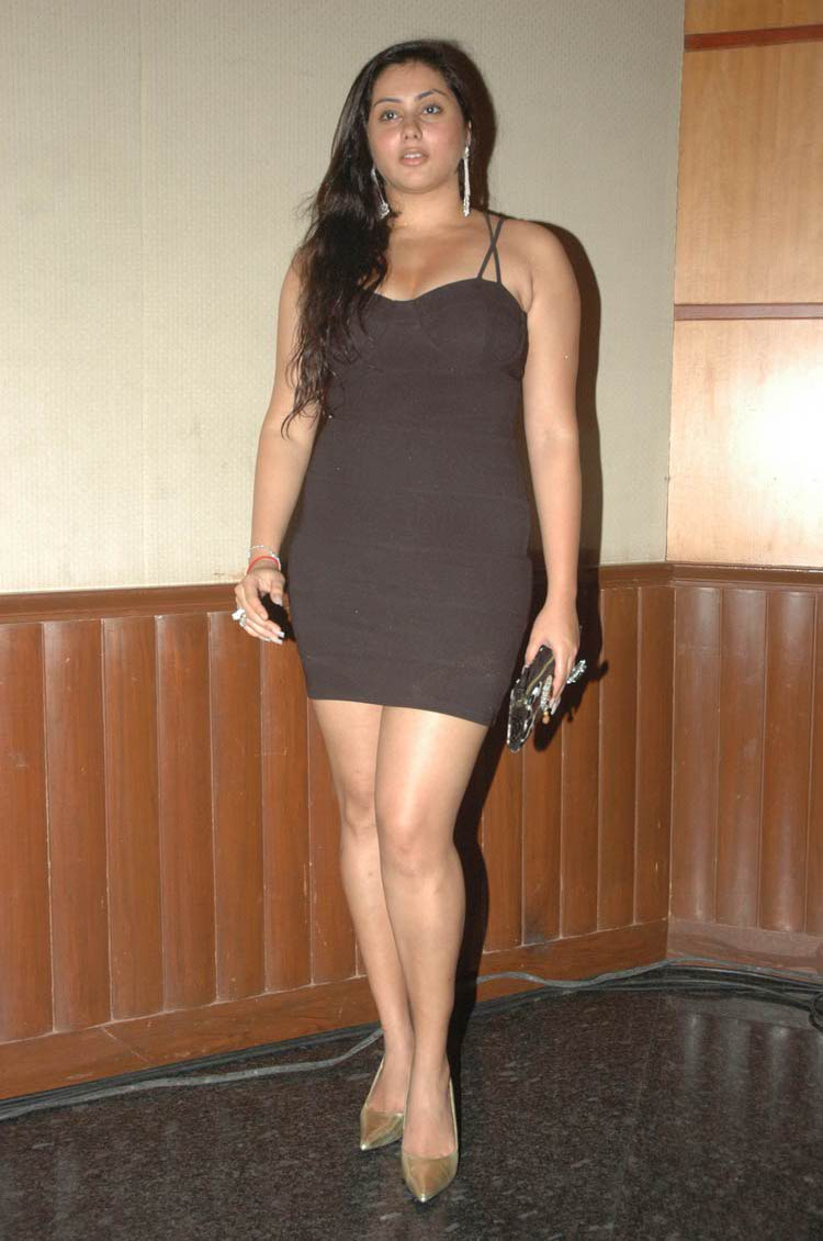 indian sexy actress images namitha hot thigh pics