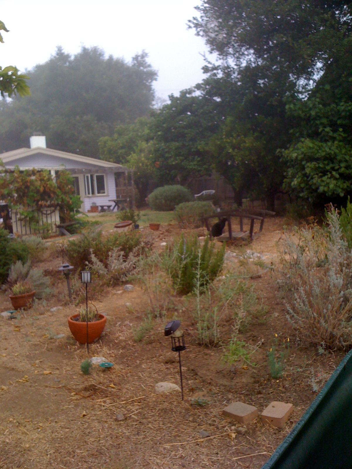 Between gardens and yard work | A Pasadena Latina | Hometown Pasadena |