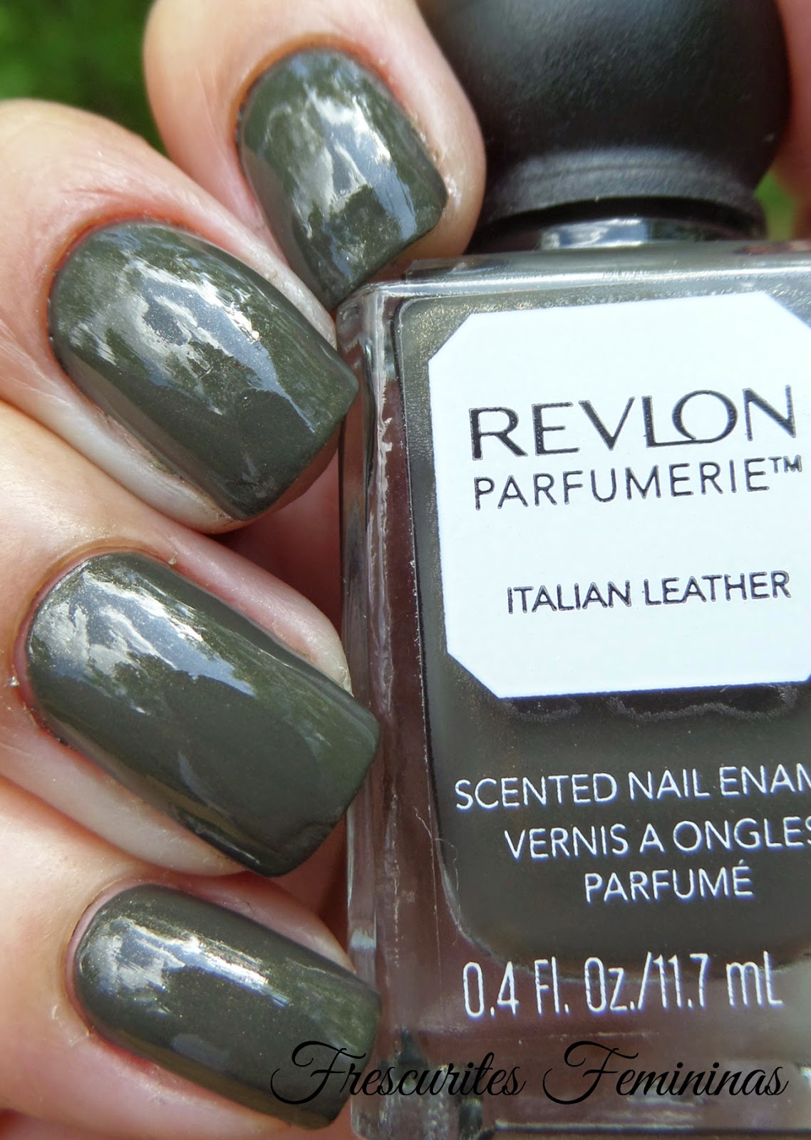 Revlon, Italian, Leather, Nail, Polish, Dark, Winter, Micro, Glitter, Golden, Frescurites, Femininas