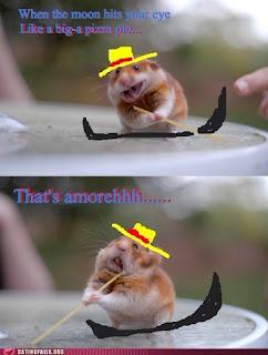 Hamster x spaghetti noodle, meme rato, meme hamster, macarrão