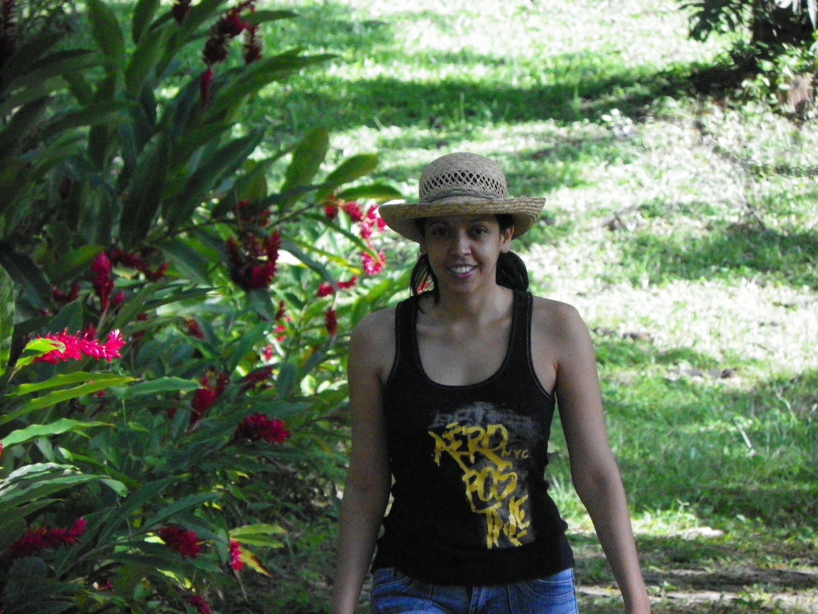 Jard n bot nico el carao flor amarilla berber a for Programacion jardin botanico