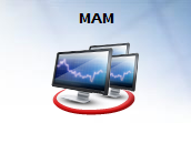 MT4 MAM