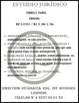 Dra. Andrea Flores - Abogada