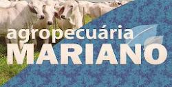 Agropecuária Mariano