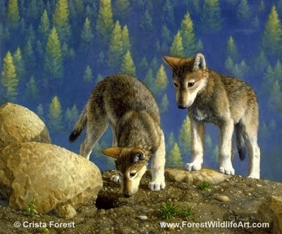 Forest Wildlife Art: Wolf Pups Coloring Book Page