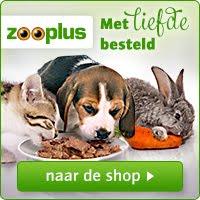 Steun onze konijnenopvang Het Vrolijke Konijnenhol