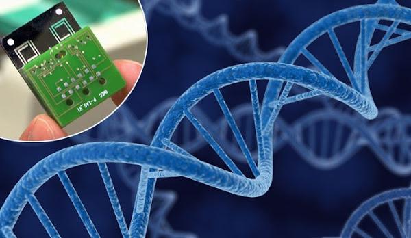 Los científicos fueron capaces de almacenar datos en el ADN