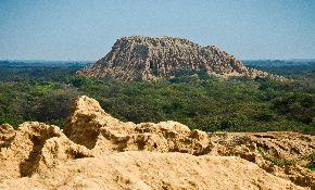 Santuario histórico del bosque de Pómac, en Lambayeque.