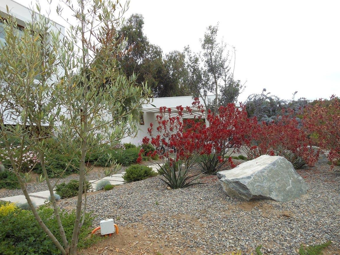 Paisajismo en chile for Paisajismo jardines
