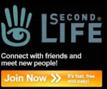 A Second Life Community