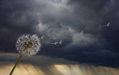 http://1.bp.blogspot.com/-dTSQaLlbTJI/Tleh-uWf-bI/AAAAAAAAIbU/c0exwkvLVbQ/s400/calm-before-storm-1.jpg