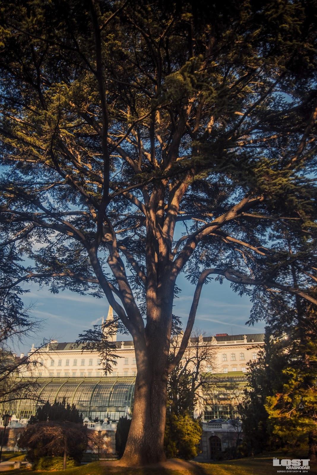 park Burggarten