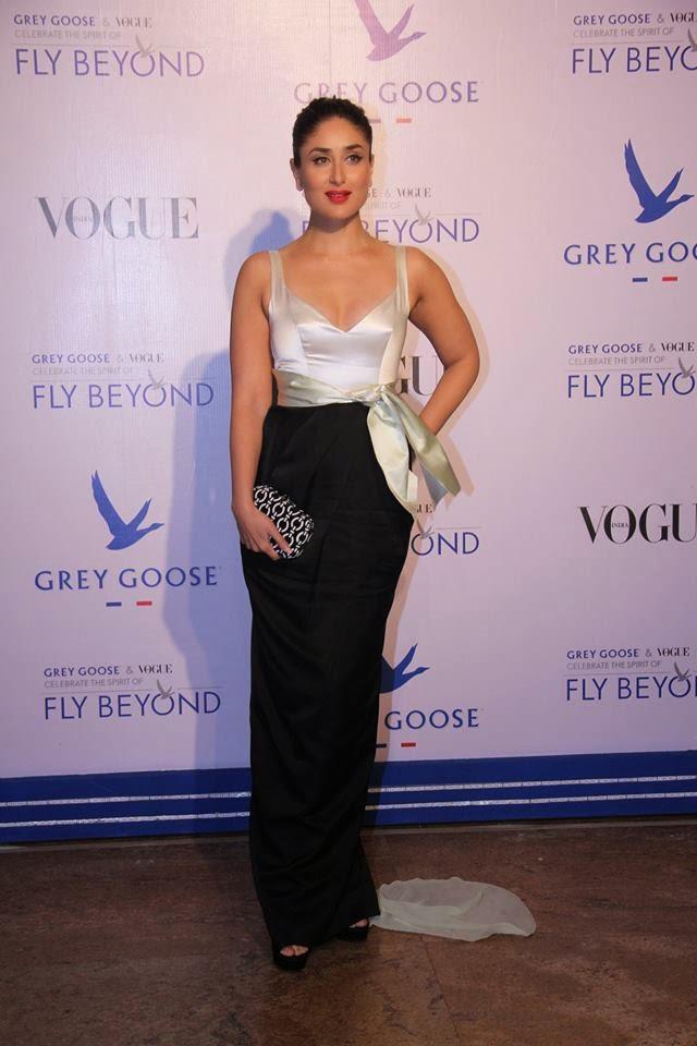 Goose Fly Beyond Awards