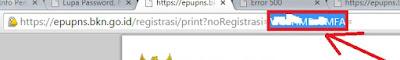 gambar solusi kode error 500 pupns