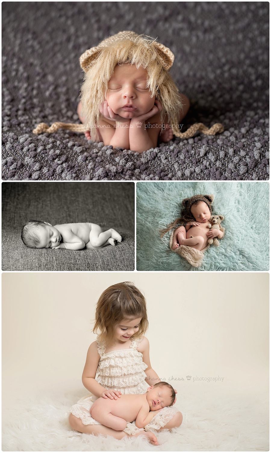 eugene springfield oregon newborn photography lion bear siblings