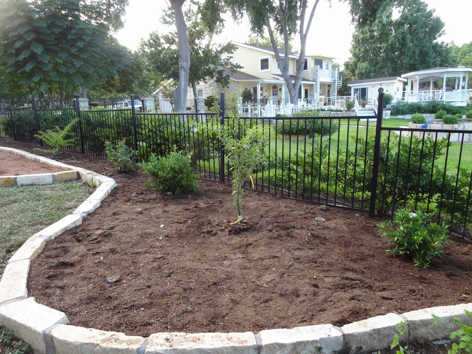 Rebecca39s Texas Garden New Bed Plantings