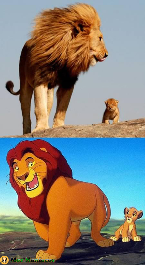 """Outra Cena de """"O Rei Leão"""""""