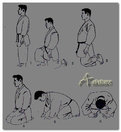 Cara Penghormatan Judo Dalam Sikap Duduk