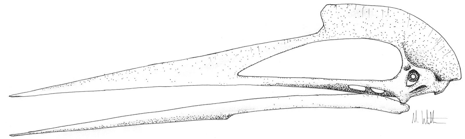quetzalcoatlus | The Pterosaur Heresies | Page 2