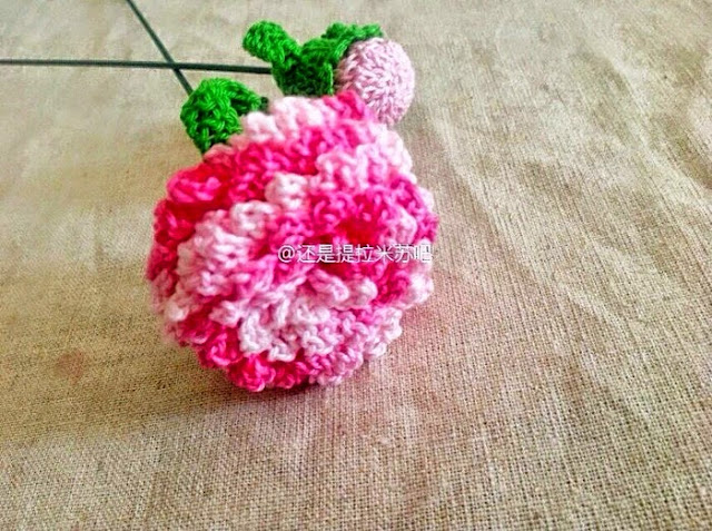 Crochet Carnation Flower Free Crochet Pattern