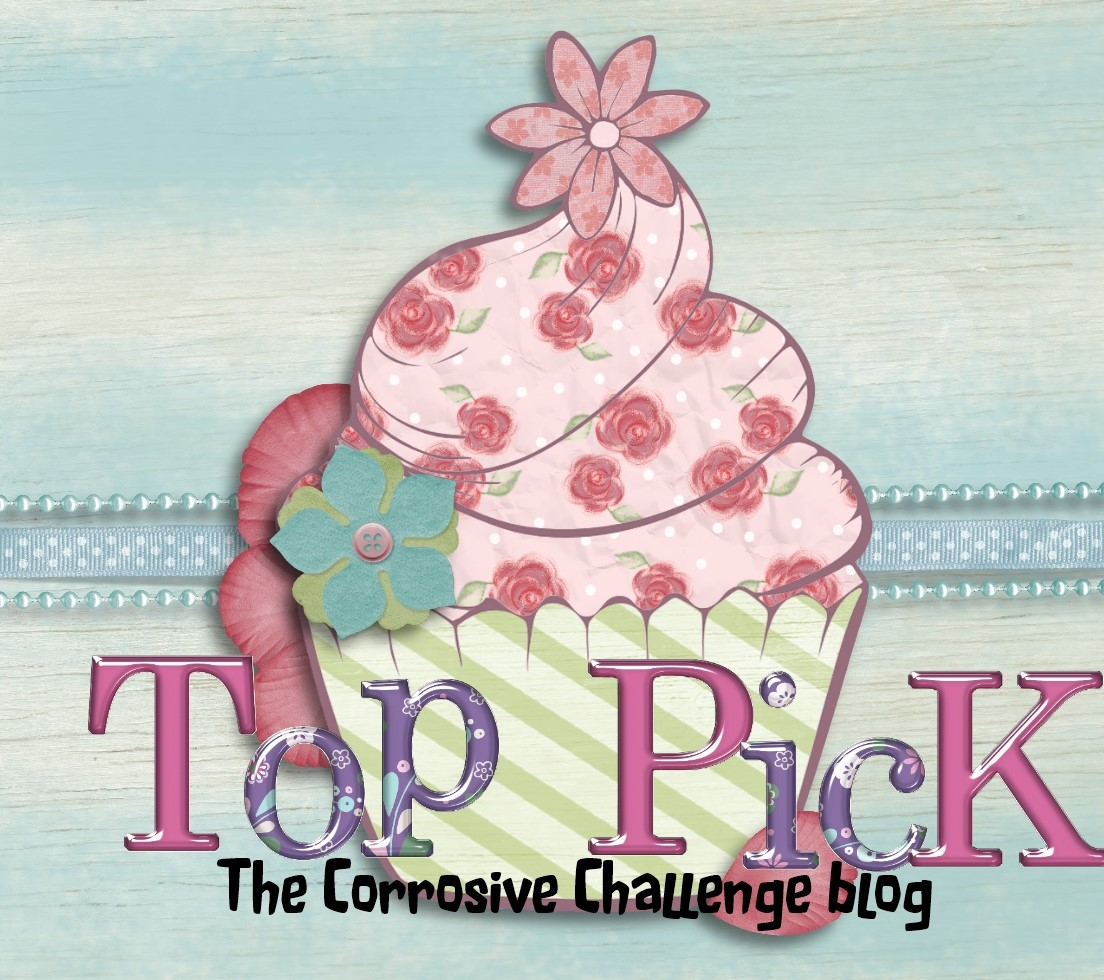 2 x The Corrosive Challenge Blog Top Pick