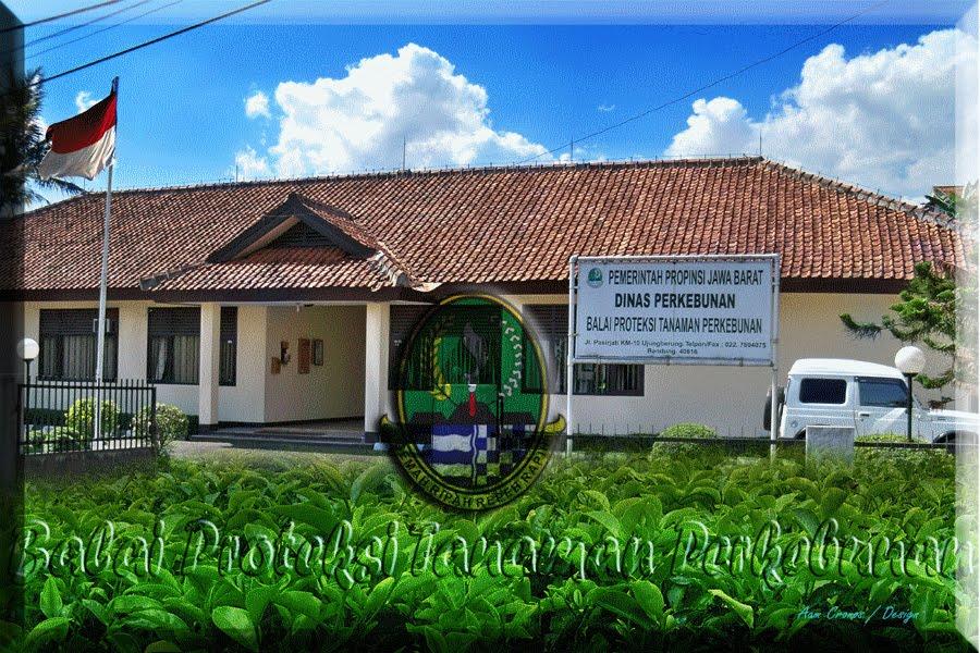 Balai Proteksi Tanaman Perkebunan