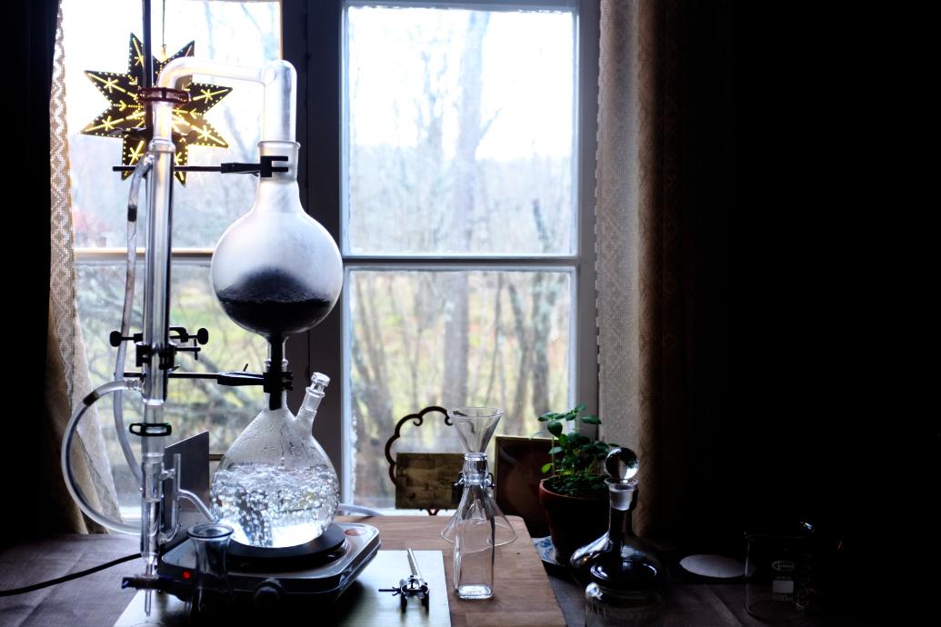 mieke willems in lisa s alchemy lab