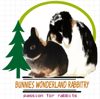 BW RABBITRY