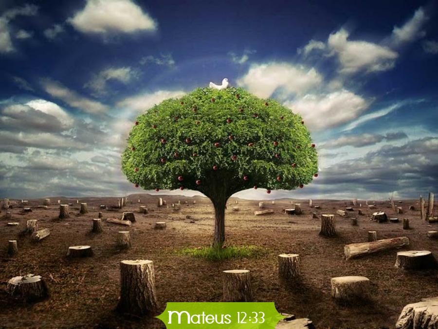 sarados pelo sangue jesus o jardineiro e as rvores