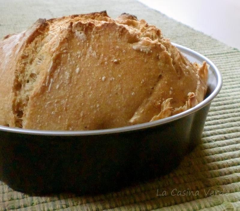 pane con casta madre_lievitazione
