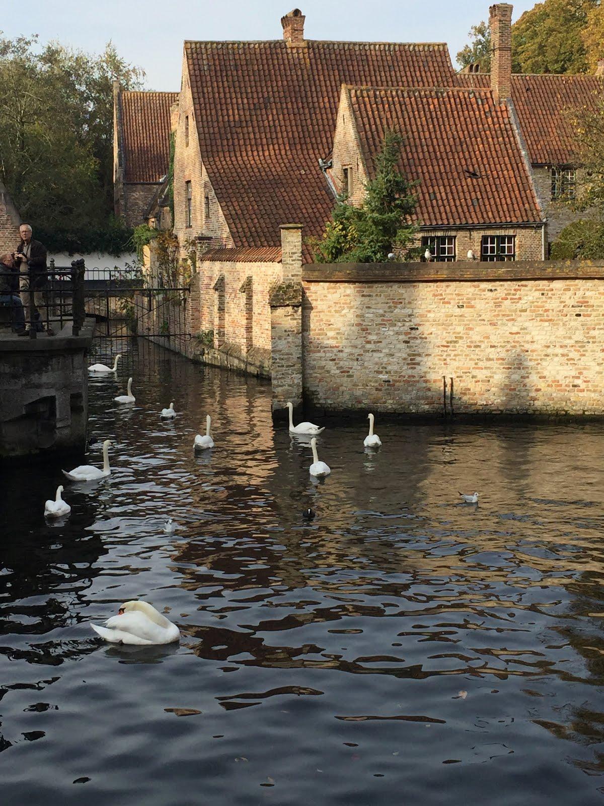 Canal at Begijnhuisje in Brugge, Belgium