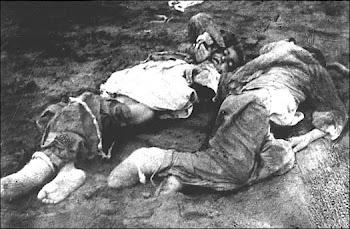 Armin T. Wegner. Ο φωτογράφος μιας Γενοκτονίας.