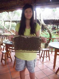 joanna lai holding honey bees