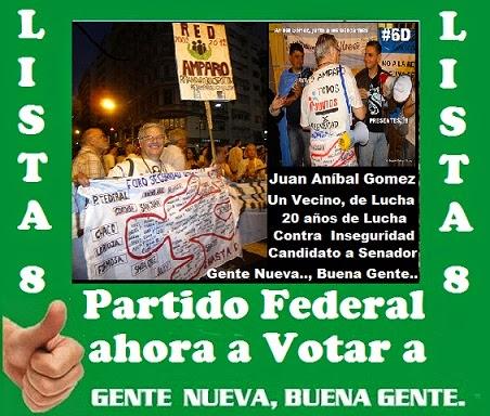 ELECCIONES 2013 - DE DIRIGENTE VECINAL EN SEGURIDAD A CANDIDATO A SENADOR NACIONAL  PARTIDO FEDERAL