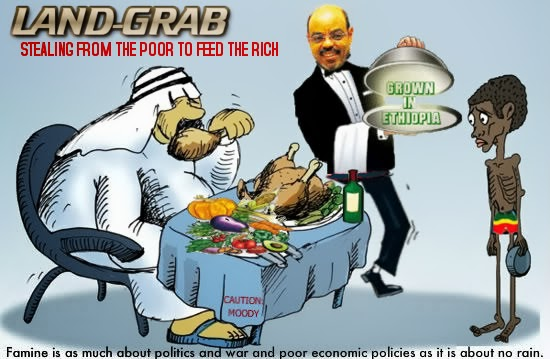 Sri Lanka parliament lifts land lease tax on foreigners from Jan 08 Land-grab+Ethiopia+Meles+zenawi