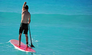 stand-up paddle board rentals, rent a paddle board, gulf shores, orange beach, alabama