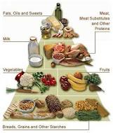 Foods Pyramid