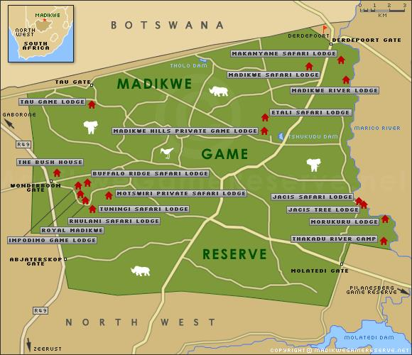 Green Route Africa Spotlight In Madikwe Private Game Reserve