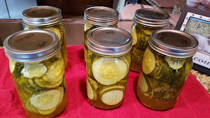 Low carb Bread & Butter pickles