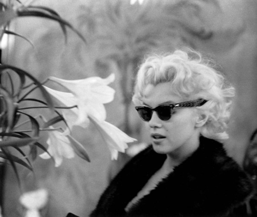 marilyn monroe and mental illness essay That's what readers assured me after i published an essay two months  as with  many mental health issues, the mechanisms of misophonia are mysterious   house and marilyn monroe and joe dimaggio were newlyweds.