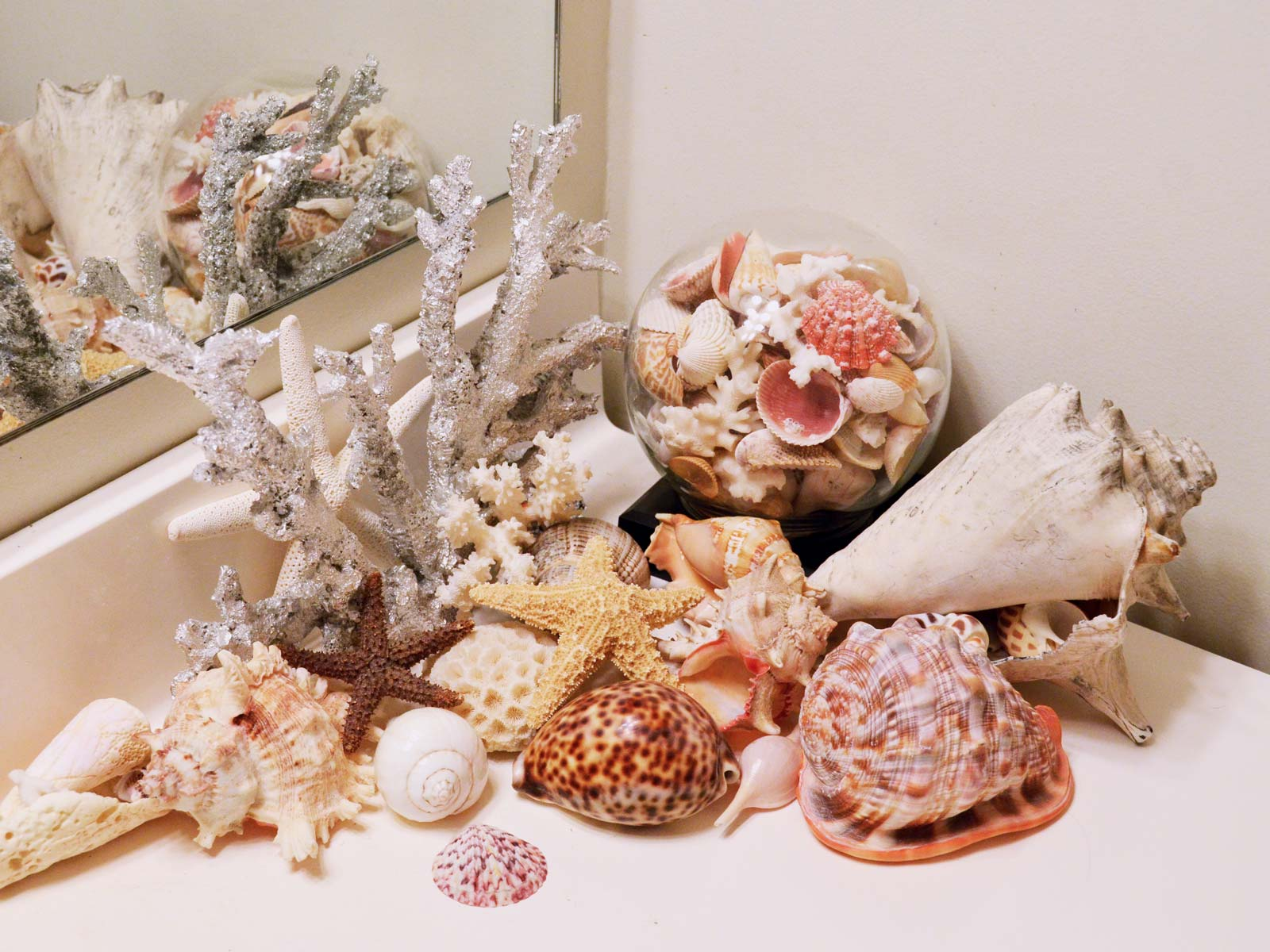 Sea shells vignette