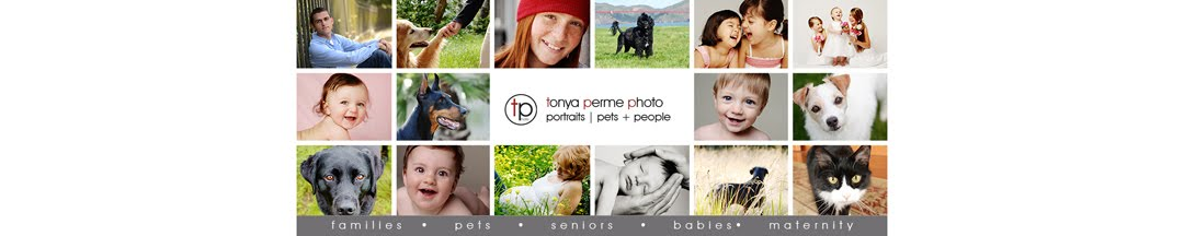 San Franciso - Oakland Pet and People Portrait Photographer | Tonya Perme Photography