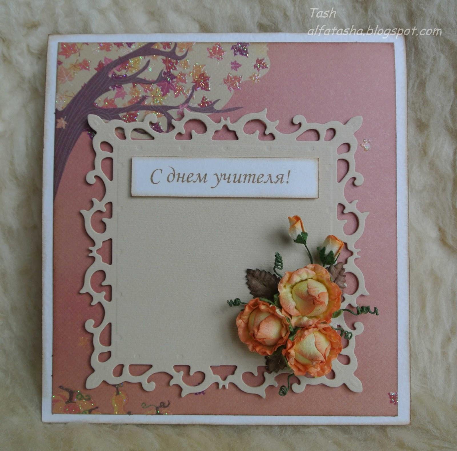 комнатные цветы фото и названия примула