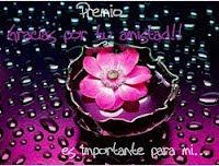 5 PREMIO