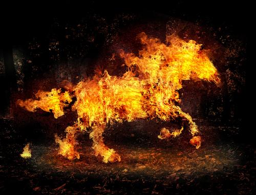 Cavalo de fogo, 4 cavalos do apocalipse, 4 cavaleiros do apocalipse