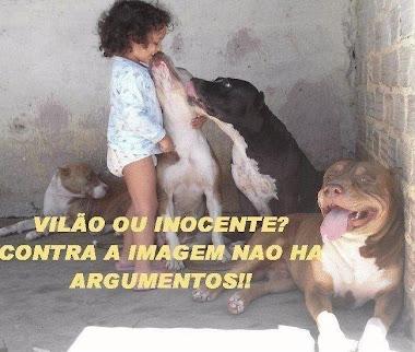 Vilão ou inocente?
