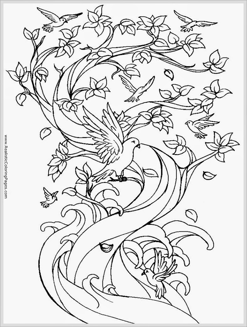 Pigeon Free Printable Adult Coloring Pages Realistic