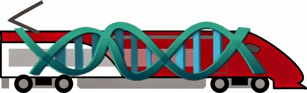 DNA is kept on track by amazingly complex and astonishingly complex machines, defying evolution and affirming the design of the Creator.